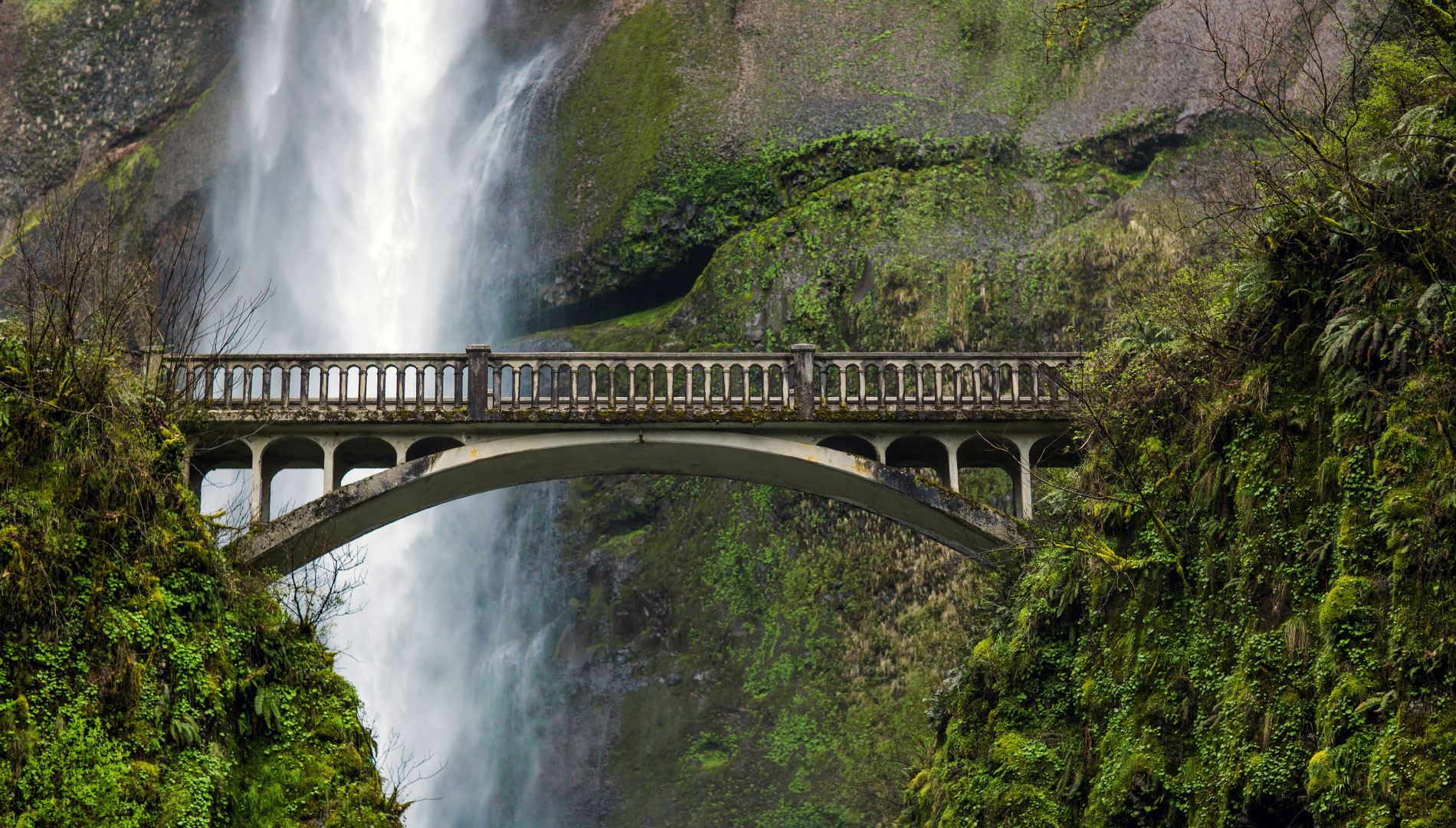 multnomah falls background